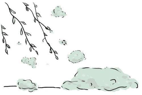棉絮纷飞的日子 您的哮喘管理落下了吗?