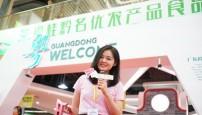 广东卫视:粤桂黔美食 美女主播带你一次吃个够!