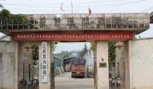 江苏双沟酿酒厂签约CCTV老故事频道《公益之窗》栏目