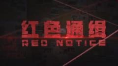 电视专题片《红色通缉》第二集《织网》今晚播出
