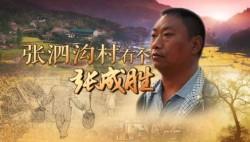 《张泗沟村有个张成胜》获第23届中国纪录片系列片好作品