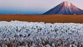 简直难以想象!地球上18个最酷炫的自然现象