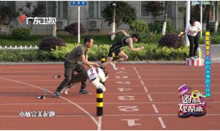 运动员PK宠物犬 百米赛跑谁将获胜?
