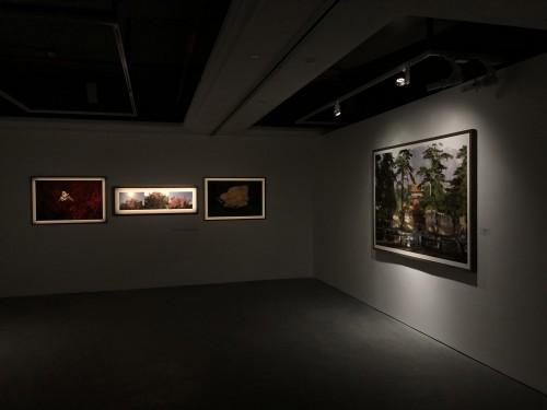 """波中之像,可以言彼   王川摄影展""""并行:历史与当下""""进行时"""