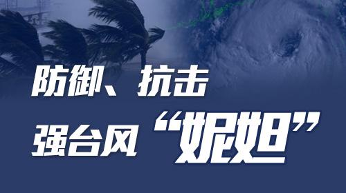 """防御抗击强台风""""妮妲"""""""