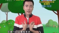 [2018-05-07]小桂英语