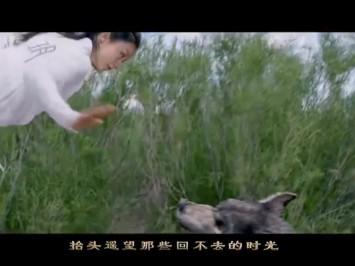 赵丽颖 张碧晨演绎《楚乔传》片头曲MV